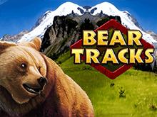 Играть бесплатно в автомат Bear Tracks